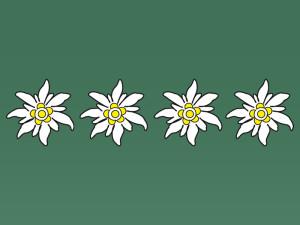 4 Edleweiss - Gütesiegel